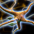 Redes de neuronas