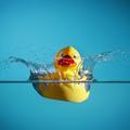 La flotabilidad