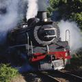 La máquina de vapor