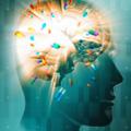 Las drogas y el cerebro