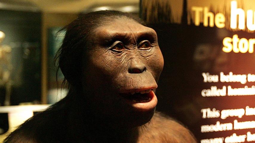 Los antepasados del hombre