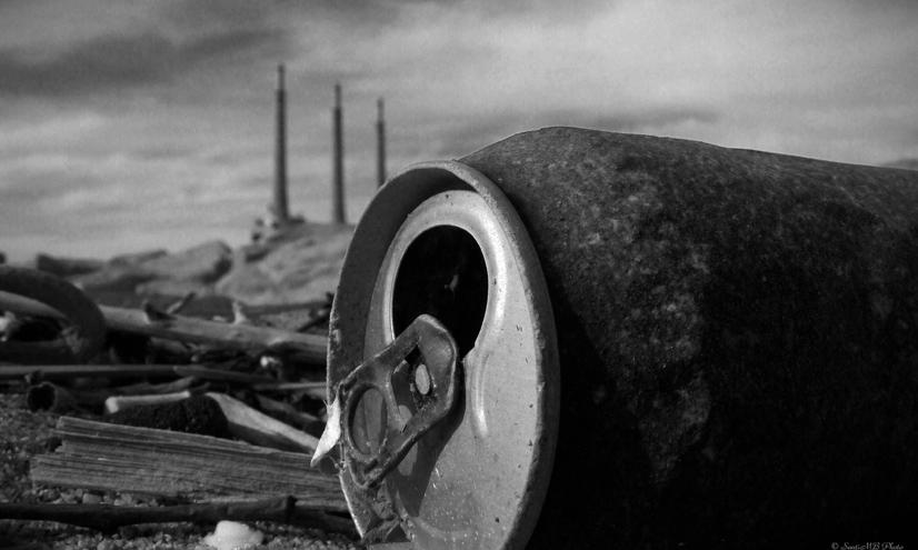 La contaminación terrestre