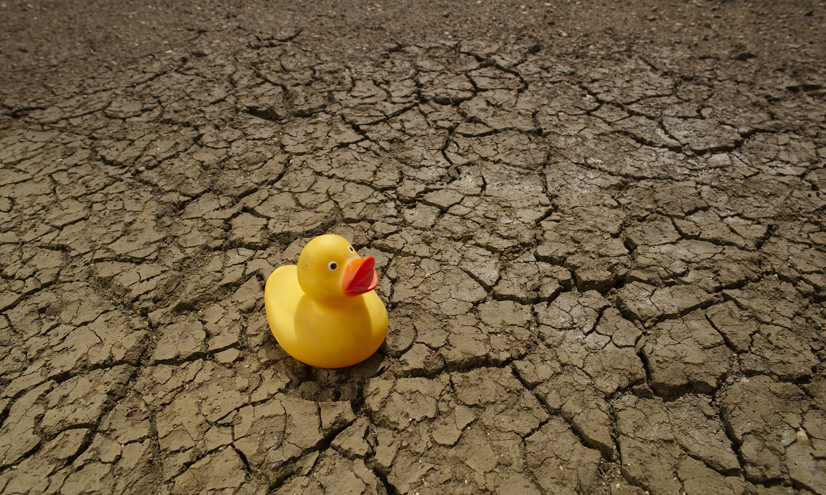 El agua como un recurso
