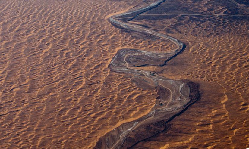 Biomas terrestres: desiertos