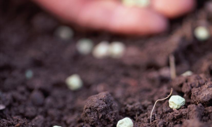 Los seres humanos y la agricultura