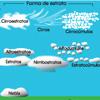 Estratos de nubes